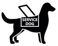 service-dog2